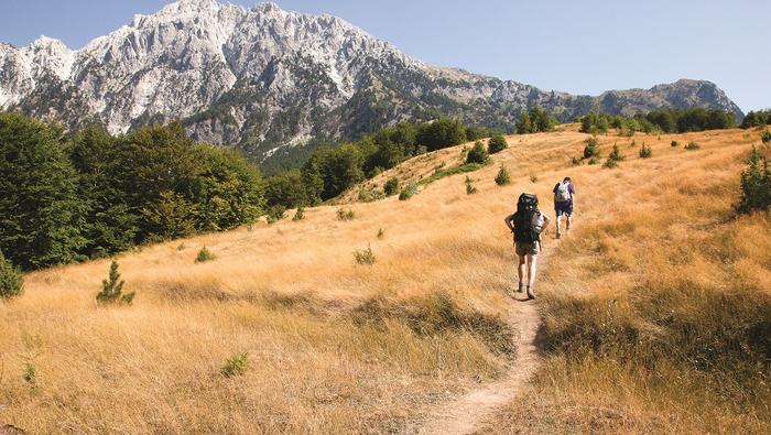 Pasterski szlak na przełęcz Quafa Pejës przecina polany porośnięte tymiankiem i oregano